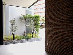 Modern Palazzo 警固(モダンパラッツォ警固)[502号室]の外観