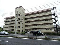 サン赤坂マンション[503号室]の外観
