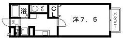 パセオきわ[1階]の間取り