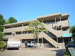 メイプルガーデン[1階]の外観
