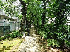 周辺環境:雷神山児童遊園
