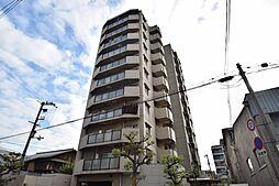 日宝ロイヤルハイツ桑津[1階]の外観