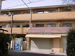 大阪府泉大津市昭和町の賃貸マンションの外観