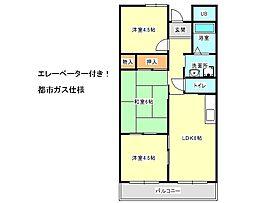 兵庫県神戸市垂水区塩屋町1丁目の賃貸マンションの間取り
