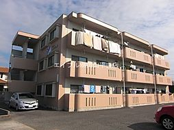 岡山県岡山市中区東川原の賃貸マンションの外観