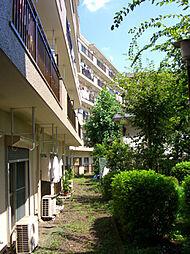 マンション小金井[310号室]の外観