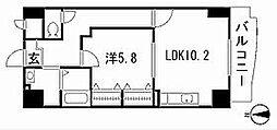 プラシードY´s[5階]の間取り