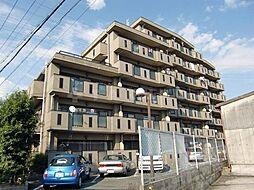 メゾン稲津[4階]の外観