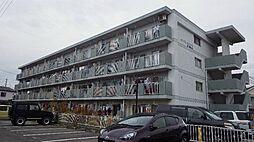 愛知県安城市横山町八左の賃貸マンションの外観