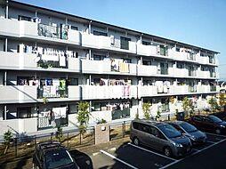 静岡県富士市森島の賃貸マンションの外観