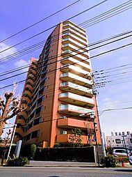 埼玉県所沢市金山町の賃貸マンションの外観