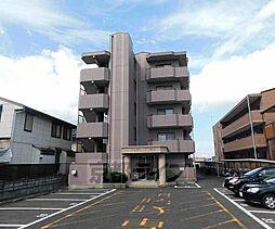 滋賀県大津市大将軍2丁目の賃貸マンションの外観