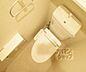 トイレ,1K,面積31.3m2,賃料7.0万円,京都市営烏丸線 北大路駅 徒歩10分,京阪本線 出町柳駅 徒歩22分,京都府京都市左京区下鴨西半木町