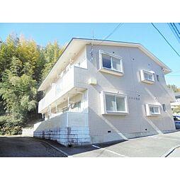 静岡県三島市大場の賃貸マンションの画像