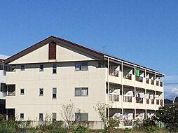 三田ハイツ[2階]の外観