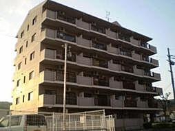 京都府京都市伏見区小栗栖森ケ渕町の賃貸マンションの外観