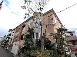 アリエッタ・パームIII[1階]の外観