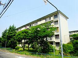 金剛第三住宅 222棟[4階]の外観