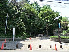林試の森公園まで徒歩約2分の立地です。