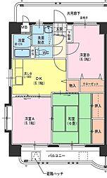 サングリーン藤沢II[6階]の間取り
