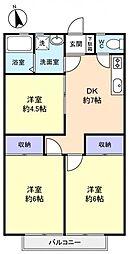 千葉県船橋市新高根1丁目の賃貸アパートの間取り