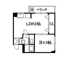 フォーシーズン京田辺[303号室]の間取り