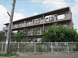 ルーチェ緑が丘C棟[2階]の外観