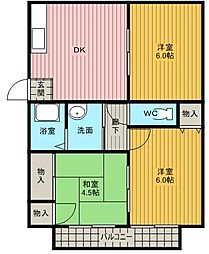 新井コーポ[1A号室]の間取り
