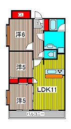 スターフィールド浦和常盤[3階]の間取り
