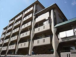 ハイツバンブー[6階]の外観
