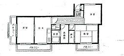 神奈川県相模原市南区新磯野の賃貸マンションの間取り