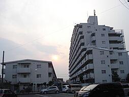 閑静な住宅街に堂々と佇むマンションです。