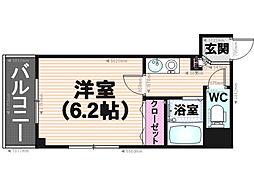 KT大橋[203号室]の間取り