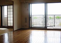 ルネ小金井公園ブリティッシュコート[6階]の外観