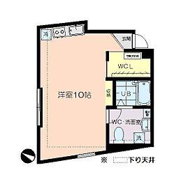 アパートメントエヌワイ[501号室]の間取り