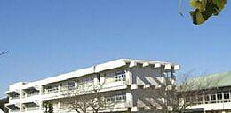 石岡市立東成井小学校(1248m)