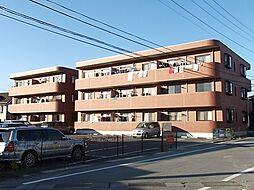 マルマンシティセントロI[3階]の外観