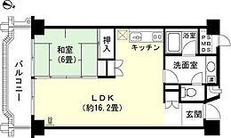 1LDK 和室6畳 LDK約16.2畳