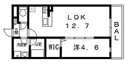 ドミソレイユII[203号室号室]の間取り