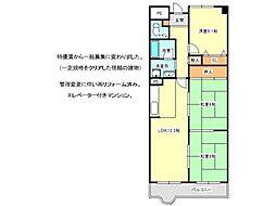 兵庫県神戸市垂水区狩口台7丁目の賃貸マンションの間取り