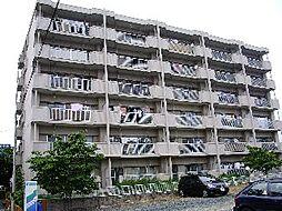 ハイツリバーサイド[3階]の外観