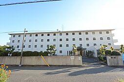 兵庫県西宮市今津巽町の賃貸マンションの画像