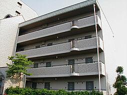 コート木幡[4階]の外観