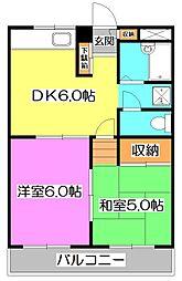 東京都練馬区石神井台5丁目の賃貸マンションの間取り