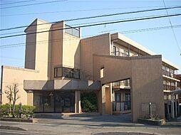 千葉県船橋市金杉8丁目の賃貸マンションの外観