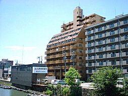 岩井橋ロイヤルハイツ[10階]の外観