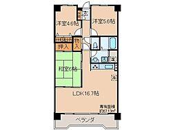 京都府城陽市平川室木の賃貸マンションの間取り