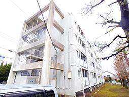 ビレッジハウス栗ヶ沢2号棟[4階]の外観
