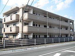 ロイヤルコート尾崎[201号室]の外観