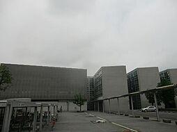 武藤コーポ[3階]の外観